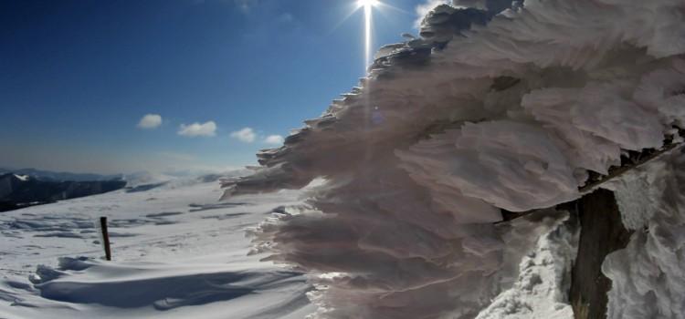 Зимнa учебнa тренировка на Пещерно спасяване